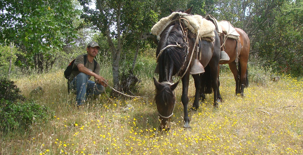 Excursions a Cheval